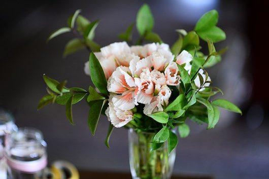 s-flowers-0208
