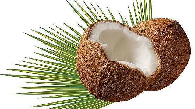 s-coconut-979858_640