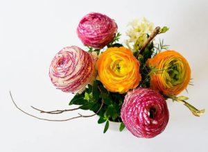 s-flowers-342532_640